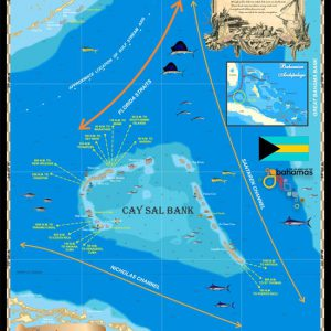 Cay Sal Map